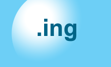 New Generic Domain - .ing Domain Registration