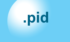 New Generic Domain - .pid Domain Registration